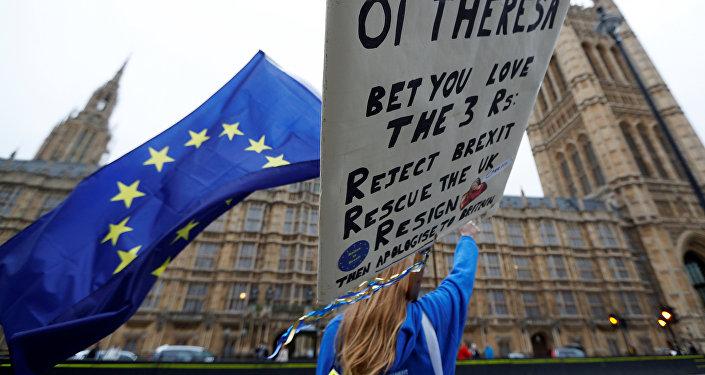 Антиправительственные демонстрации в Лондоне, 14 ноября 2017 года