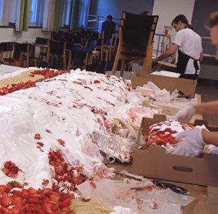 Веганский пирог в полтонны испекли в Швеции