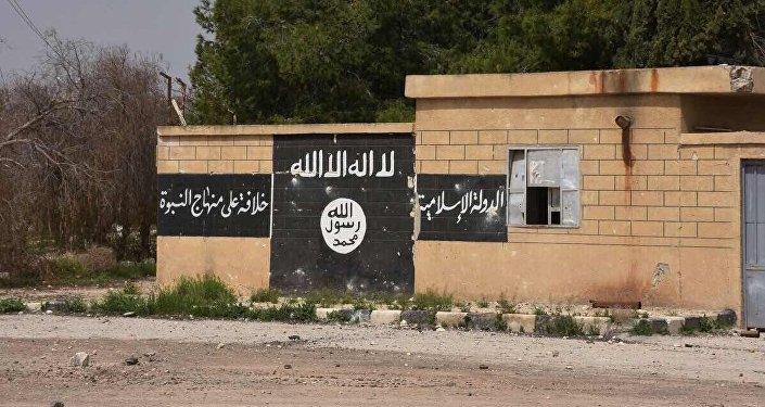 İŞİD-ə qoşulan qadınlar