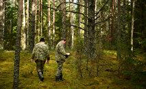 Smolensk meşəsində axtarış