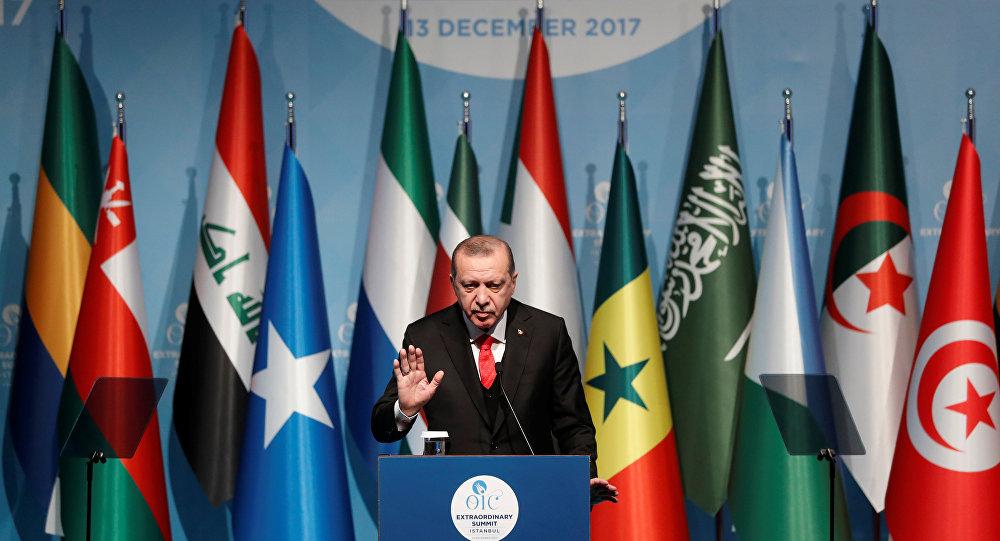 Эрдоган бросил вызов Израилю— Саммит вСтамбуле