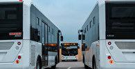 Müasir avtobuslar