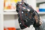 İnsan beynini oxuyan cihaz