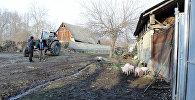 Qax rayonunun Qımır kəndi