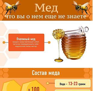 Интересные факты о пчелином меде