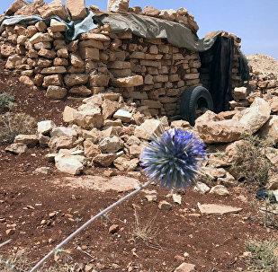 Место базирования террористов Джебхат-ан-Нусра в горном районе Эрсаль на ливано-сирийской границе в долине Увейни