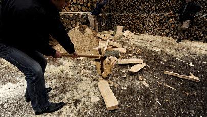 Заготовка дров, фото из архива