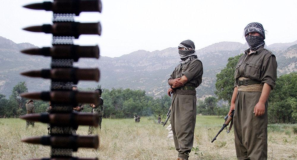 Турция предупреждает об опасности: с курдскими террористами надо быть начеку
