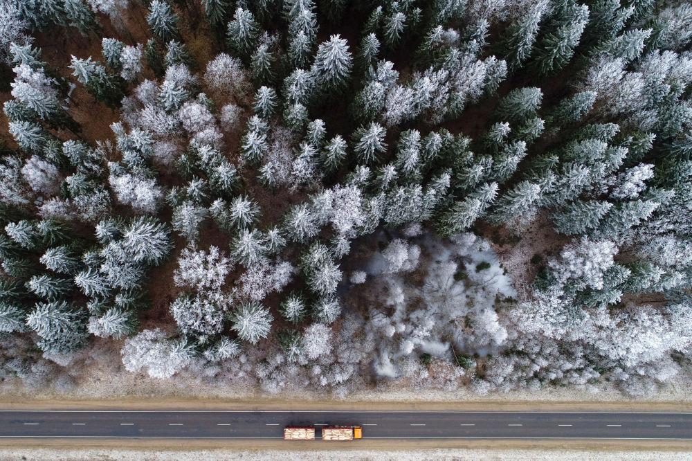 Грузовик едет по лесной дороге недалеко от деревни Крево