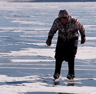 Бабушка на коньках