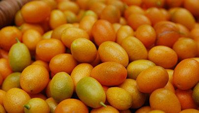 Плоды кумквата