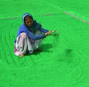 Женщина подготоваливает цветной порошок перед фестивалем Холи в Индии