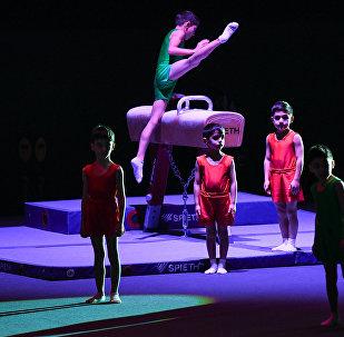 Церемония открытия Кубка мира по спортивной гимнастике