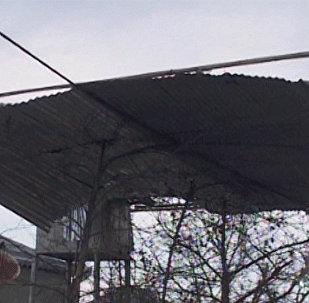 Последствия сильного ветра в Дашкесанском районе