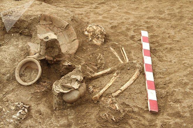 Нынешние раскопки позволят обнаружить древнее поселение на территории некрополяй